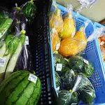 三木市別所産の夏野菜
