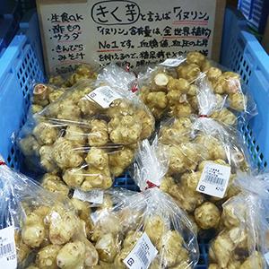 三木市別所産 きく芋